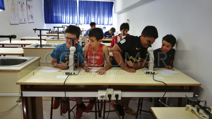 Laboratorio en Summer Camp